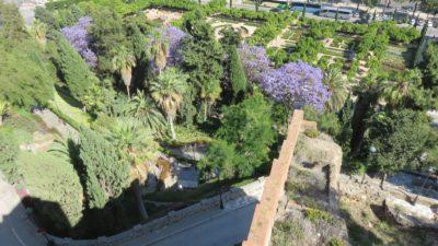 Les jardins de l'Alcazaba - Malaga
